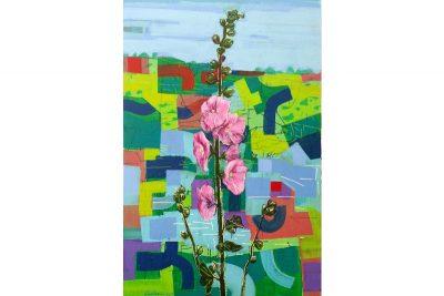 Flowers (Alcea Setosa) In Green Field