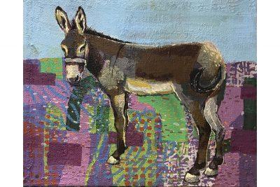 Palestinian Donkey 06