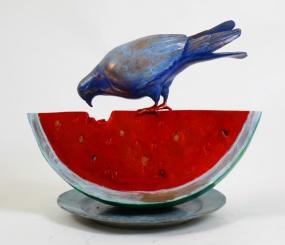Pigeon tasting watermelon