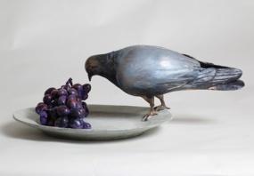 Pigeon tasting grapes