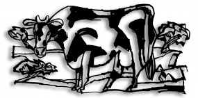 Lonely Cow 03
