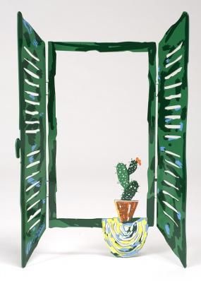 Window cactus